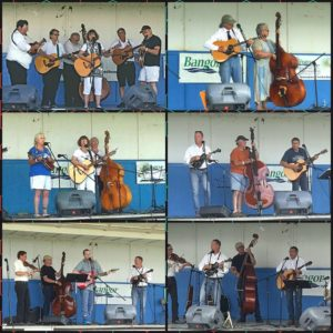 curran bluegrass festival